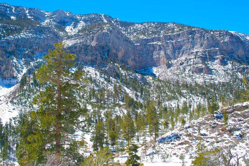 Mojave Desert & Red Rock Canyon, Vegas-DSC_2193-070.jpg
