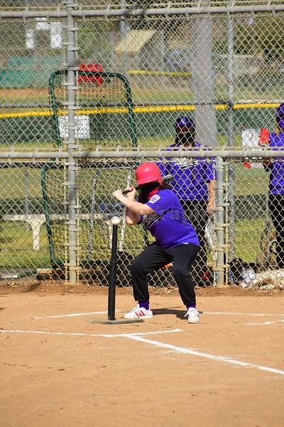 Challenger Baseball 17APR2021