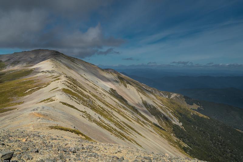 Ridge Track from Angelus Hut to St. Arnaud
