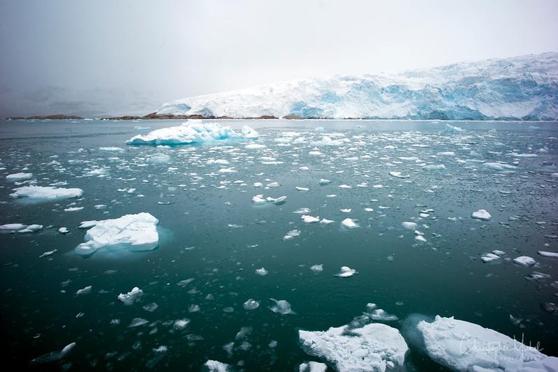 9-2-16175382 magdalene fjord, svalbard.jpg