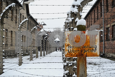 survivors-visit-auschwitz-a-day-ahead-of-70th-anniversary