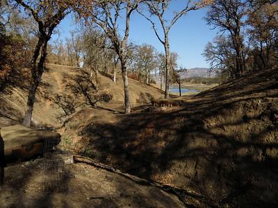 Smittle Creek Trail, 11.3.2020