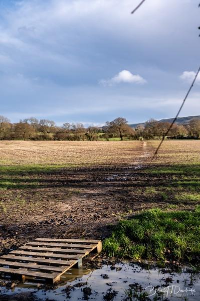 Walk to Oldland Mill-1250.jpg