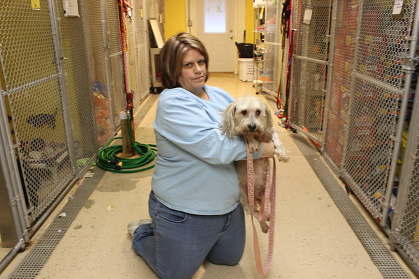 Medina SPCA rescues 15 dogs