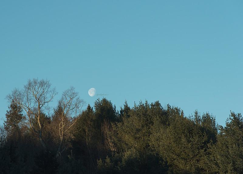 Early Moon 2017