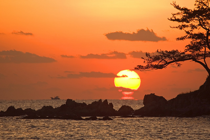 Omega-shaped sunrise under pine tree Ulsan.jpg