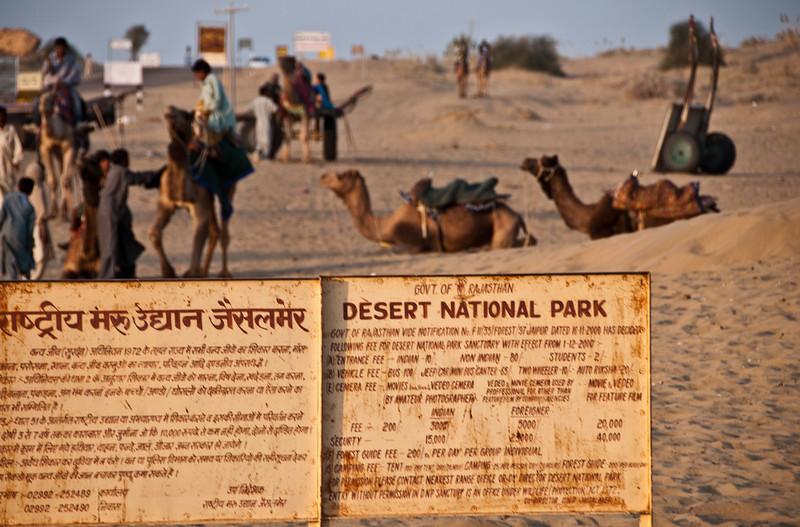 POW Day 5-_DSC3641- Jaisalmer.jpg