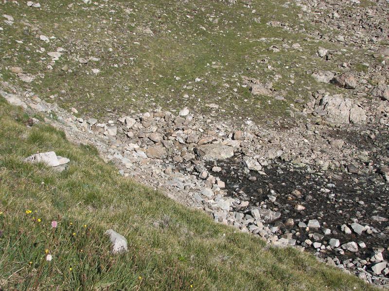 Torreys Peak 7-13-06 052.jpg