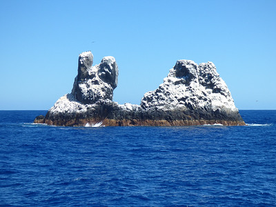 Socorro Islands 2017
