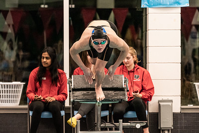 Minnetonka Swim & Dive Girls 2019
