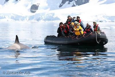 ANT001 Grand Antarctica