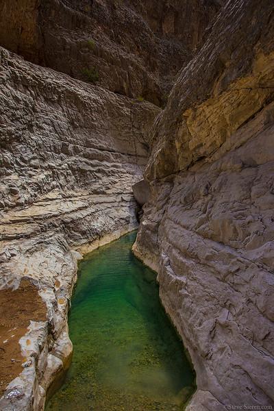 Fern Canyon 1 Chihuahua Mexico.jpg