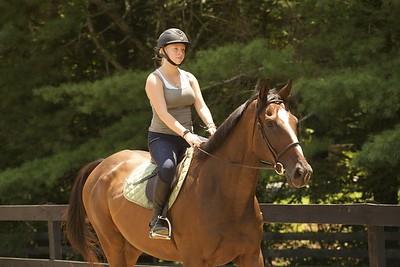 Illahee Horses