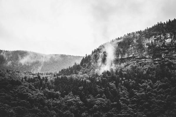Nature+Landscapes