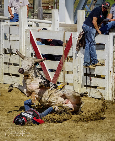 Cowtown Rodeo 4/28/2019