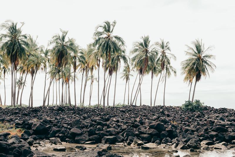 Hawaii20-89.jpg