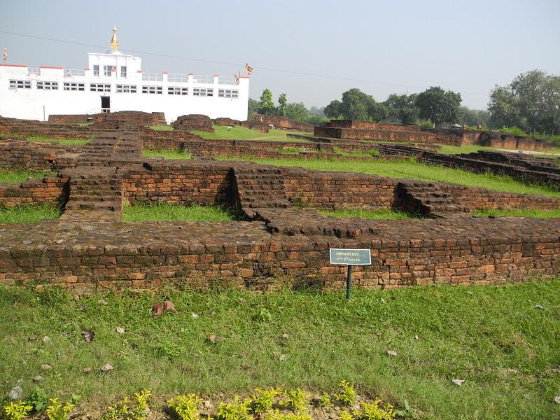 india&nepal2011 037.jpg