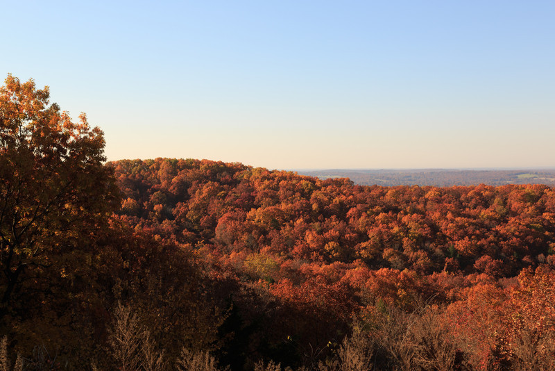 2013_11_03 Missouri Fall 014.jpg
