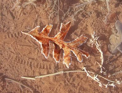 Moab, UT Nov 1, 2009