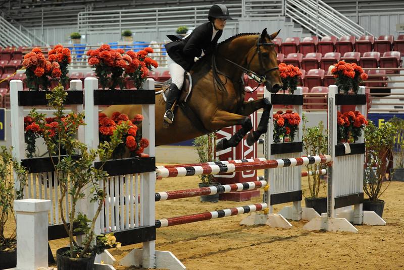 Horse show (78).jpg