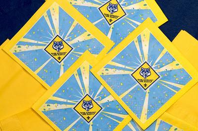 Blue & Gold Banquet 2-24-09