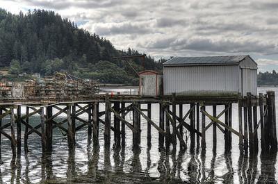 Oregon Coast 08-12