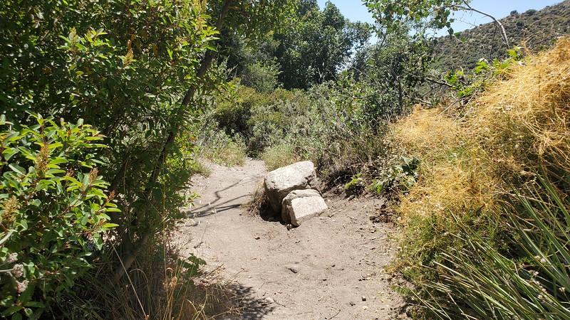 Blue Bug Trail, rock jump with go-around