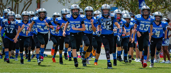 North Pinellas Panthers