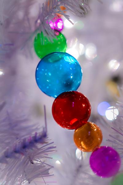 Christmas DSC_4537-45371.jpg