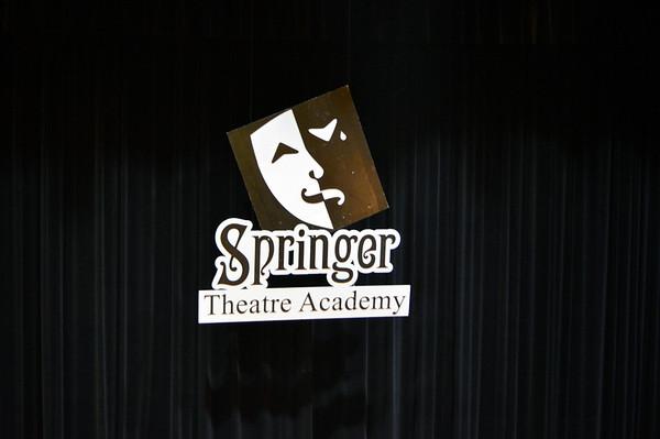 2014 Springer Academy Camp E3-E5