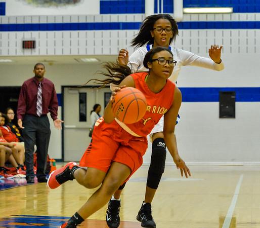 Lady Panthers, Junior Varsity, South Grand Prairie,12-08-15, Basketball-2