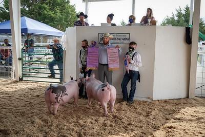 WPJLS Pigs 2