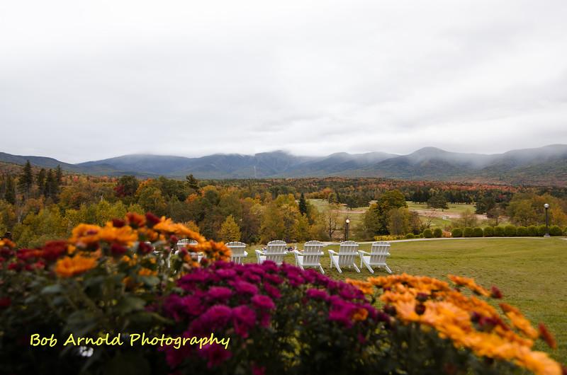 NH Foliage-29.jpg