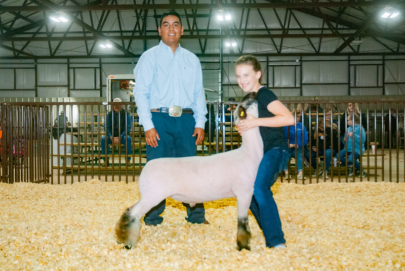 kay_county_showdown_sheep_20191207-120.jpg