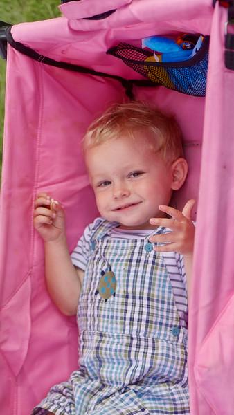 Arthur in Pink
