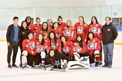 2017 Churchill Girls Hockey