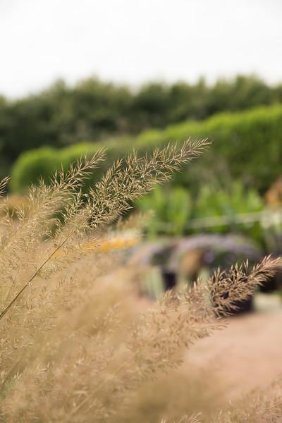 Chicago Botanic Garden 064.jpg