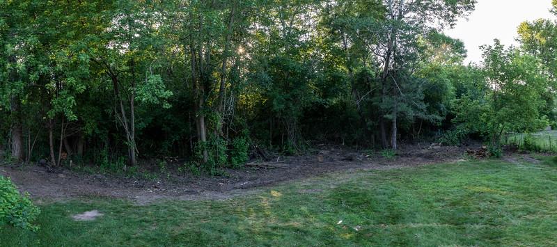 2020-07-05-Backyard