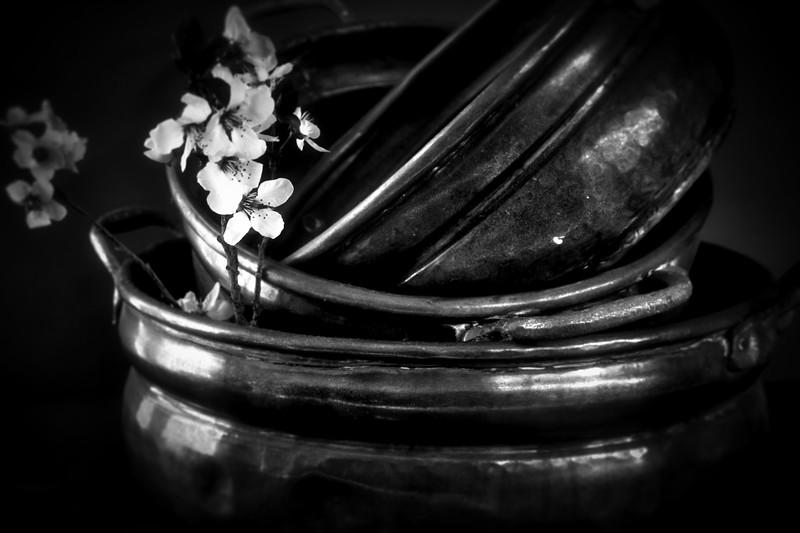Copper Pots 1615.jpeg