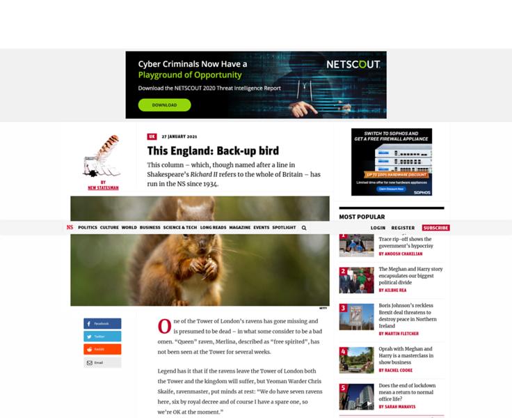 Screenshot_2021-03-10 This England Back-up bird.png