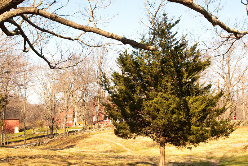 2009 Nov 22_Weir Farm_1378_edited-1.jpg