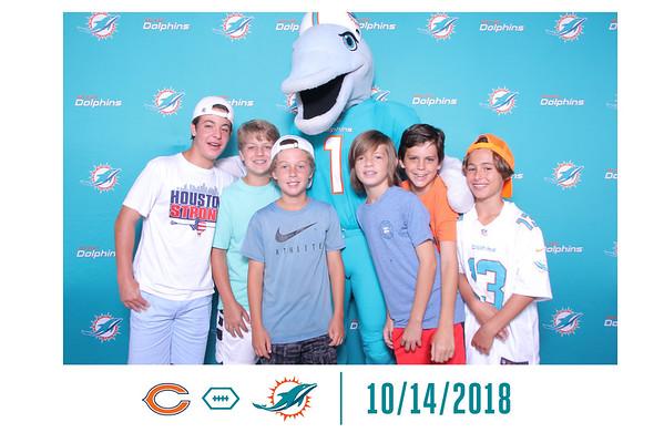 Dolphins & Bears
