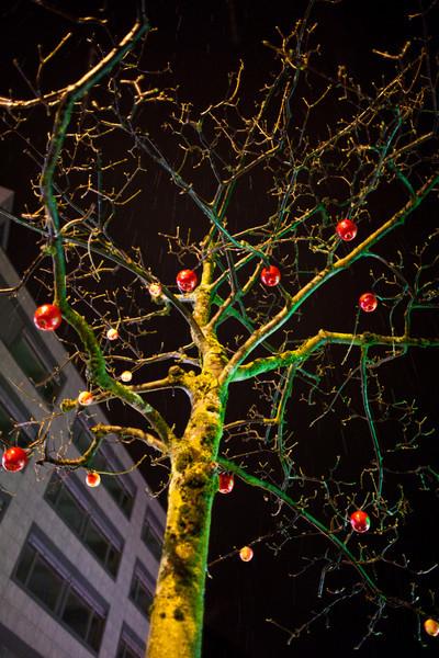 20110221_Goldau_Night_0138.jpg