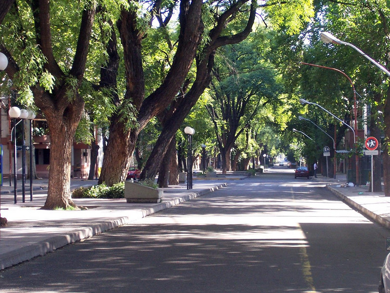 The Hostel Independencia is on this wide street.  The big trees are on the median.