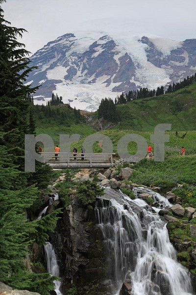Mt. Rainier & Myrtle Falls 2310.jpg