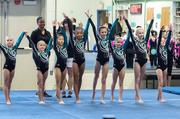 1-11-2020 Arlington Aerials Gymnastic Meet