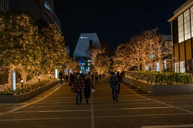 Tokyo -9920.jpg