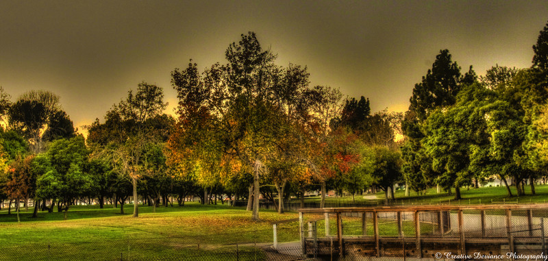 November 20, 2009
