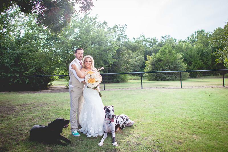 2014 09 14 Waddle Wedding - Bride and Groom-795.jpg