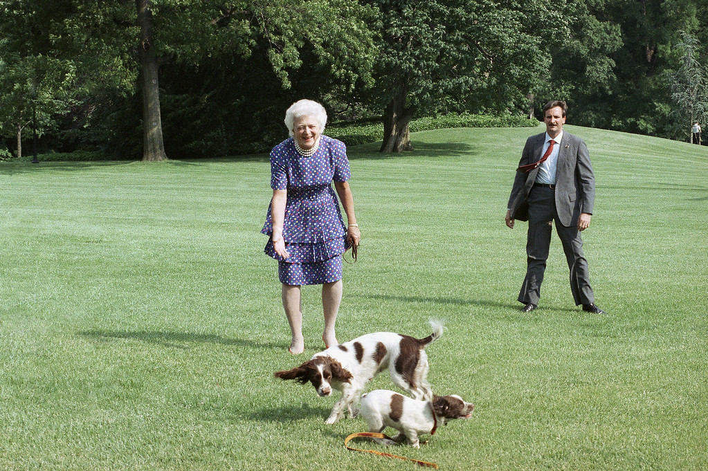 . First lady Barbara Bush is greeted by Millie and her puppy BJ as she arrives at the White House in Washington, June 4, 1989 from a weekend at their Kennebunkport, Maine home. Mrs. Bush accompanied the President to the recent NATO summit. (AP Photo/Charles Tasnadi)